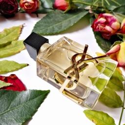 Libre, la nouvelle eau de parfum audacieuse d'Yves Saint Laurent